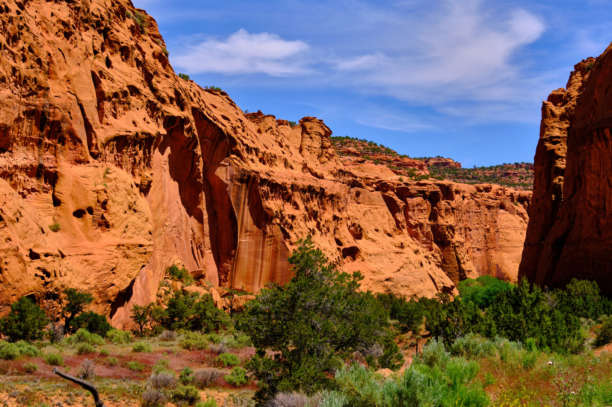 Singing Canyon